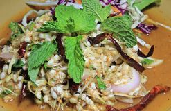 The Spicy Salad Egg of Ant,Traditional Thai Style Food Stock Image