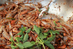 Spicy salad and fish - asia food. Royalty Free Stock Photography