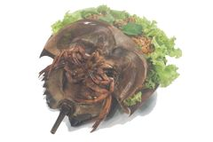 Spicy salad horseshoe crab egg Royalty Free Stock Photo