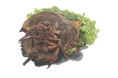 Spicy salad horseshoe crab egg Royalty Free Stock Photos
