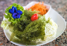 Spicy salad sea grapes or Umi Caviar , green caviar or oval sea grapes seaweed. Royalty Free Stock Images