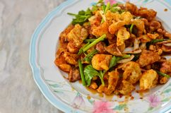 Spicy salad , Thai style food Stock Photography