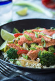 Spicy Salmon Stock Photography