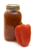 Spicy Salsa Royalty Free Stock Photo