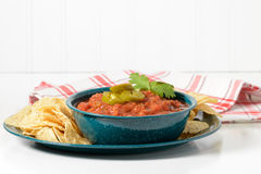 Spicy Salsa Bowl Stock Images
