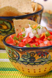 Spicy salsa with tortilla chips. Bowl of spicy salsa with tortilla chips in the background royalty free stock images