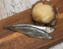 Spicy salted anchovies and boiled potatoes Stock Image