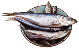 Spicy salted sprats in ceramic bowl Stock Photo