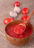 Spicy sauce with   tomatoes and garlic Royalty Free Stock Photos
