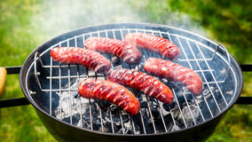 Spicy sausages with rosemary on garden grill Stock Image