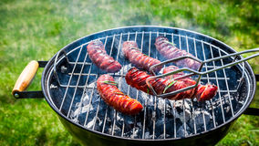 Spicy sausages with spices and rosemary on garden grill Royalty Free Stock Photography