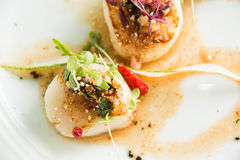 Spicy scallop serve in Thai style Stock Images