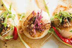 Spicy scallop serve in Thai style Royalty Free Stock Photo