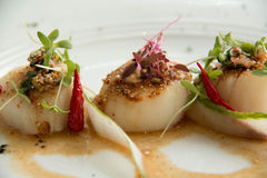 Spicy scallop serve in Thai style Stock Image