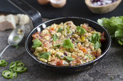 Spicy scrambled eggs. Indian scrambled eggs with tomatoes and chillies Royalty Free Stock Images