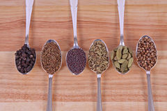Spicy Seasoning. Six different whole spice seeds in silver spoons on a wooden background Royalty Free Stock Photo