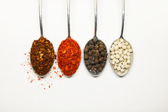 Spicy seasoning. Thai spices on spoon. Pepper and caryenne peppe. R Royalty Free Stock Images