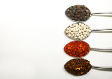 Spicy seasoning. Thai spices on spoon. Pepper and caryenne peppe. R Royalty Free Stock Photo