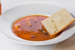 Spicy Shrimp Soup royalty free stock images
