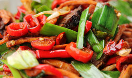 Spicy Sichuan dish of meat, chilli pepper, onion and bamboo shoots Royalty Free Stock Photography