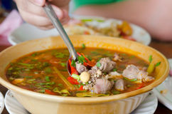 Spicy soup Royalty Free Stock Photography