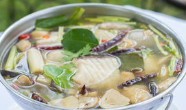 Spicy Soup with Catfish (Tomyum), Thai food. Royalty Free Stock Photos