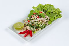 Spicy and sour mixed herb salad with meat and side dish Stock Images