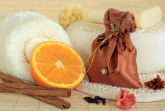 Spicy Spa Cleansing Products Stock Photography
