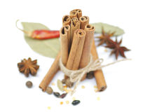 Spicy spices. Anise, carnation, cinnamon, pepper and barberry Royalty Free Stock Images