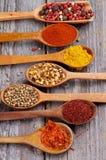 Spicy Spices Stock Photos