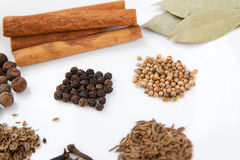 Spicy spices Royalty Free Stock Photography
