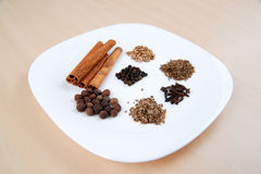 Spicy spices Royalty Free Stock Images