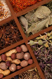 Spicy Spices in Wooden Box Royalty Free Stock Photos