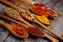 Spicy Spices Royalty Free Stock Image