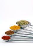 Spicy spoons Stock Photos