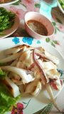 Spicy squid with chilli sauce Royalty Free Stock Images