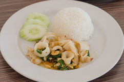 Spicy squid with rice Royalty Free Stock Photo
