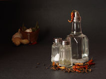 Spicy still-life Stock Images