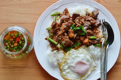 Spicy stir fried chicken entrails curry and egg with fish chili sauce cup. Spicy stir fried chicken entrails curry and egg on rice with fish chili sauce cup stock images
