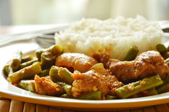 Spicy stir fried fat pork and yard long bean curry eat couple with rice. Spicy stir fried fat pork and yard long bean curry eat couple with plain rice stock photography