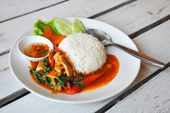 Spicy Stir Fried Pork with Red Curry Royalty Free Stock Photography