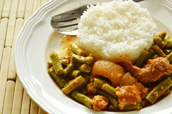 Spicy stir fried yard long bean and fat pork curry eat couple with rice. On dish royalty free stock images