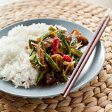 Spicy stir fry Royalty Free Stock Images