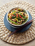 Spicy stir fry Royalty Free Stock Photo