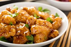 Spicy sweet and sour chicken with rice and cabbage Stock Images