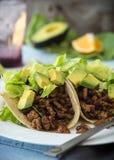 Spicy Tacos Stock Photos