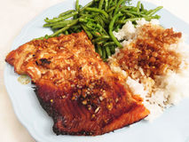 Spicy Teriyaki Sockeye Salmon Fillet Royalty Free Stock Images