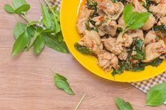 Spicy Thai Basil and Chicken stock image