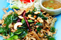 Spicy thai food Royalty Free Stock Photo
