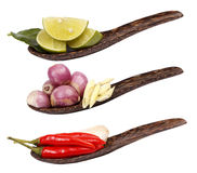 Spicy Thai food ingredients Royalty Free Stock Image